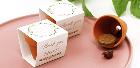 Flowerpots: outdoor wedding favours filled with flower seeds