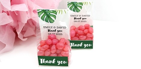 clear-sweet-bags-wedding-favours