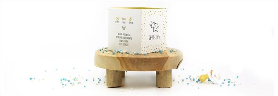 olifant-geboortekaartje