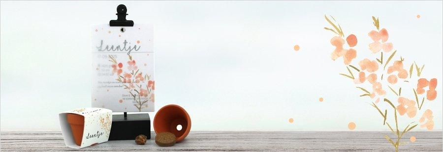 peach-dots-combinatie-kaarten-bedankje