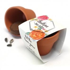 Peonies Fanfare Flower Pots