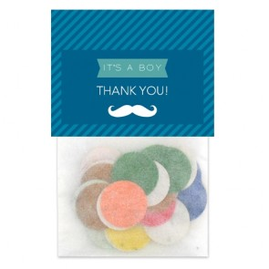 Moustache Flowerbags Baby Shower favours