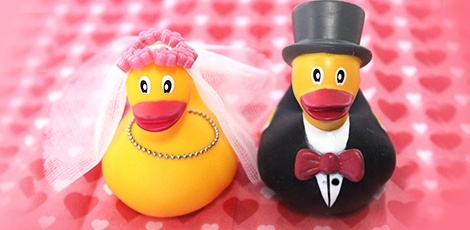 rubber-duck-lovebirds